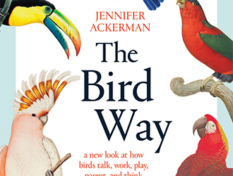 Simon Caterson reviews 'The Bird Way: A new look at how birds talk, work, play, parent, and think' by Jennifer Ackerman