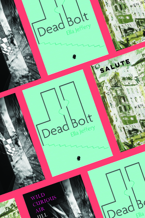 Luke Beesley reviews 'Wild Curious Air' by Jill Jones, 'Dead Bolt' by Ella Jeffery, and 'Salute' by Ken Bolton