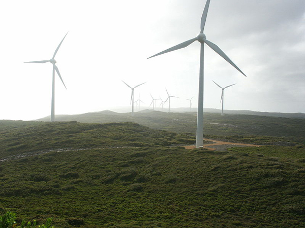 Wind Farm at Albany, Western Australia (photography by Nachoman-au via Wikimedia Commons)