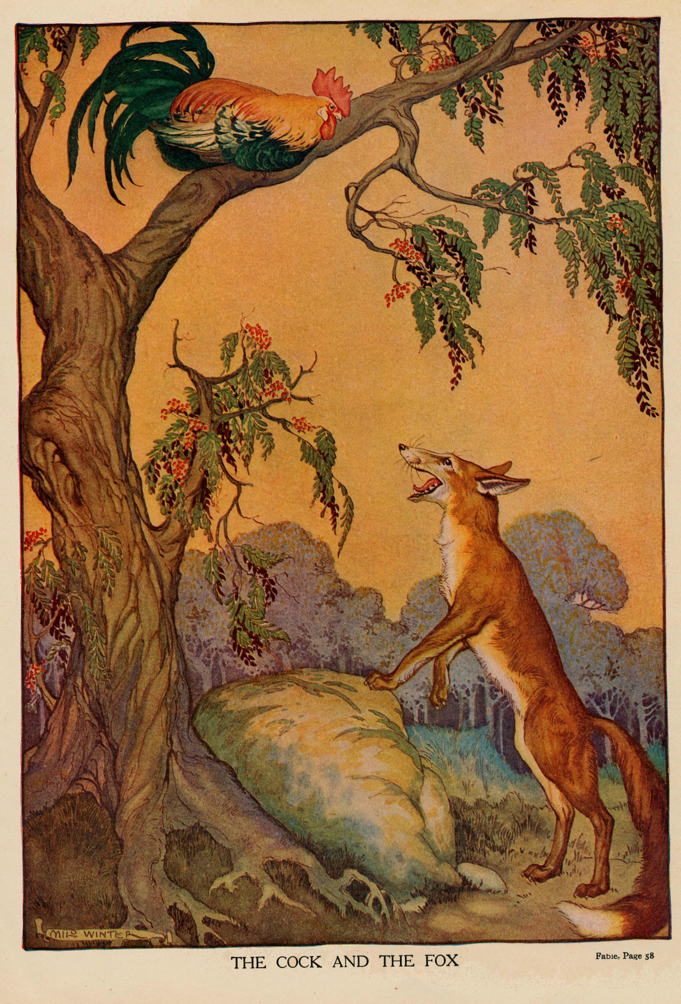 The Cock And The Fox By Milo Winter, 1919.