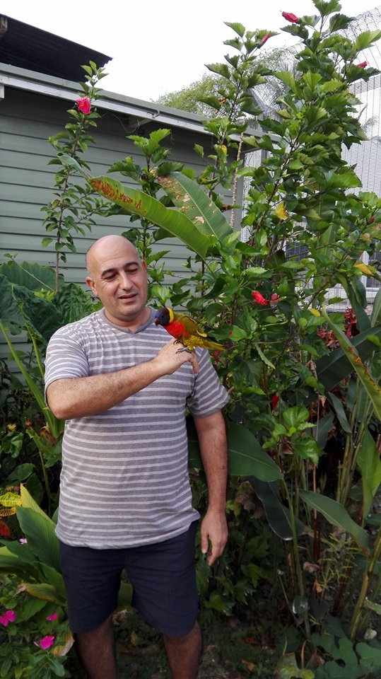 Mohammad Ali Maleki with a rainbow lorikeet in his graden on manus island. (Photo via Rochford Street Review)