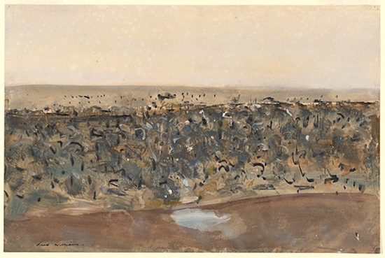 Fred Williams Pond in the You Yangs 1962 National Gallery of Victoria