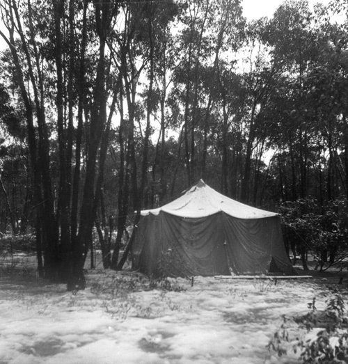 Tent---cropped