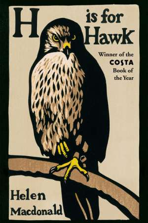 Daniel Juckes reviews 'H is for Hawk' by Helen Macdonald