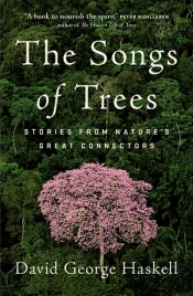 Roger McDonald reviews 'The Songs of Trees: Stories from nature's great connectors' by David George Haskell