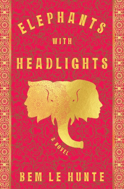 Declan Fry reviews 'Elephants with Headlights' by Bem Le Hunte