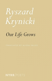 Benjamin Ivry reviews 'Our Life Grows' by Ryszard Krynicki, translated by Alissa Valles