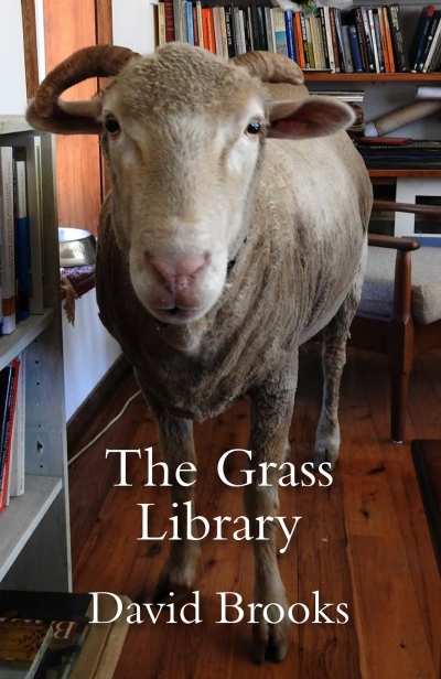 Ben Brooker reviews 'The Grass Library' by David Brooks