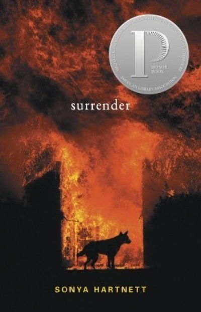 Lisa Gorton reviews 'Surrender' by Sonya Hartnett