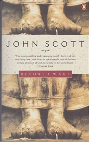 Don Anderson reviews 'Before I Wake' by John Scott