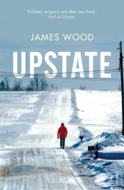 Brenda Niall reviews 'Upstate' by James Wood