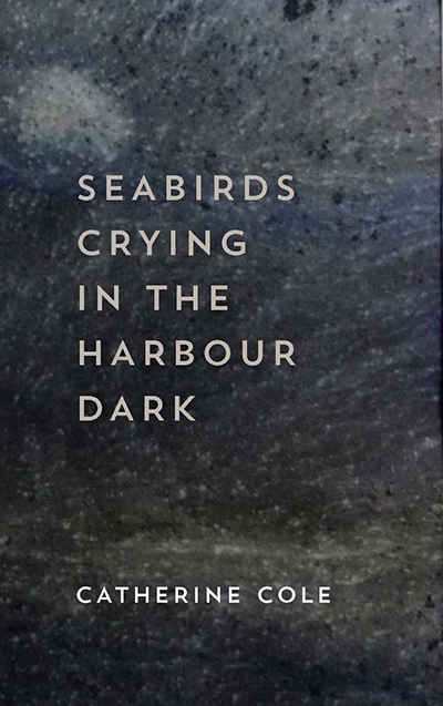Rachael Mead reviews 'Seabirds Crying in the Harbour Dark' by Catherine Cole