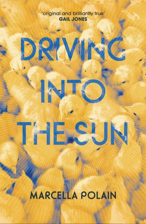 Stephen Dedman reviews 'Driving Into the Sun' by Marcella Polain