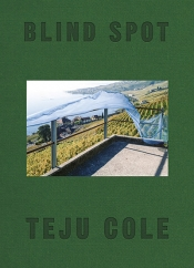 Louis Klee reviews 'Blind Spot' by Teju Cole