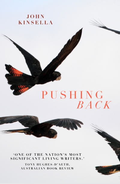 Thuy On reviews 'Pushing Back' by John Kinsella