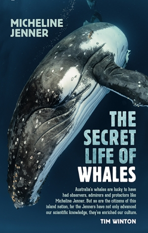 Rachael Mead reviews 'The Secret Life of Whales: A marine biologist's revelations' by Micheline Jenner