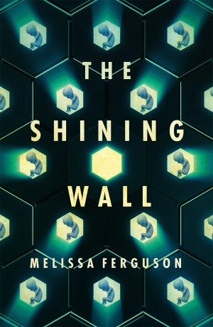 Jacinta Mulders reviews 'The Shining Wall' by Melissa Ferguson