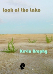 Joan Fleming reviews 'Look at the Lake' by Kevin Brophy