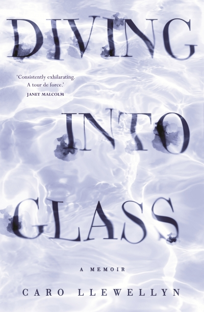 Astrid Edwards reviews 'Diving into Glass: A memoir' by Caro Llewellyn