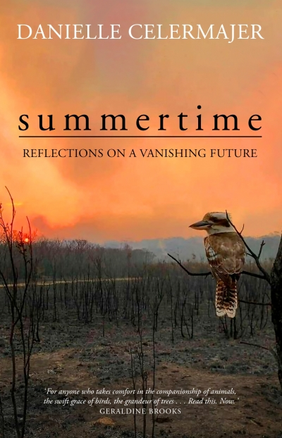 Alice Bishop reviews 'Summertime: Reflections on a vanishing future' by Danielle Celermajer