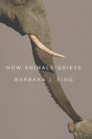 Animals in their graves