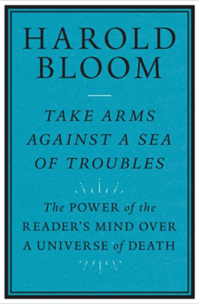 James Ley reviews 'Take Arms Against a Sea of Troubles: The power of the reader's mind over a universe of death' by Harold Bloom