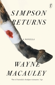 Alex Cothren reviews 'Simpson Returns: A novella' by Wayne Macauley