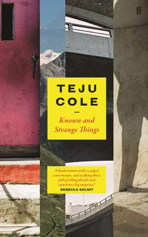 Sujatha Fernandes reviews 'Known and Strange Things' by Teju Cole