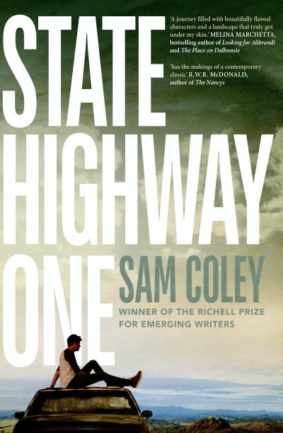 Chloë Cooper reviews 'State Highway One' by Sam Coley