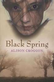 Bec Kavanagh reviews 'Black Spring' by Alison Croggon