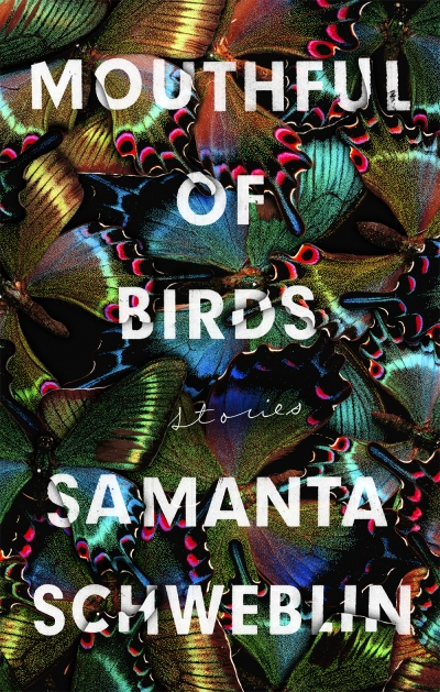 James Halford reviews 'Mouthful of Birds: Stories' by Samanta Schweblin, translated by Megan McDowell