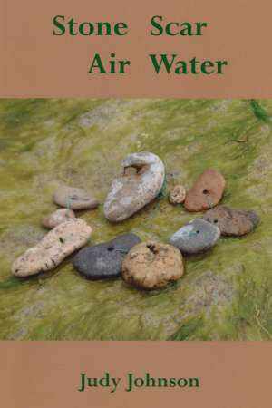 Rose Lucas reviews 'Stone Scar Air Water' by Judy Johnson