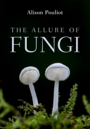 Andrea Gaynor reviews 'The Allure of Fungi' by Alison Pouliot